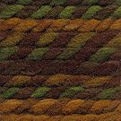Hayfield Colour Rich Chunky 200g - 389 Forest Fusion - CLEARANCE PRICE £2.99